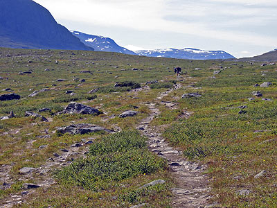 Alpine high lands in Swedish Lapland